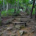 Photos: 弥勒山山頂へと通じる急な上り坂 - 2