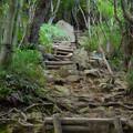 Photos: 弥勒山山頂へと通じる急な上り坂 - 3
