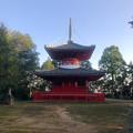 Photos: 尾張信貴山 泉浄院の多宝塔 - 1