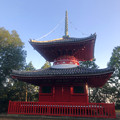 Photos: 尾張信貴山 泉浄院の多宝塔 - 2