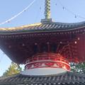 Photos: 尾張信貴山 泉浄院の多宝塔 - 3
