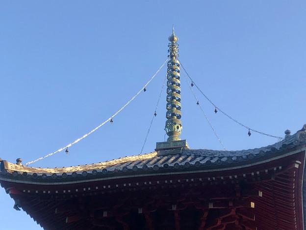 尾張信貴山 泉浄院の多宝塔 - 4