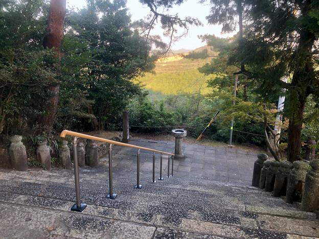 尾張信貴山 泉浄院 No - 41:本堂前の階段