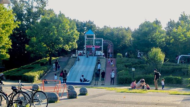 小幡緑地 西園 No - 6:滑り台