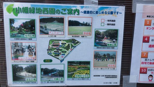 小幡緑地 西園 No - 9:案内図