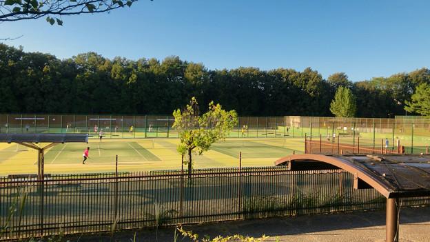 小幡緑地 西園 No - 10:テニスコート