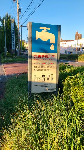 小幡緑地 西園 No - 14:駐車場出入り口にある「災害時給水所」の案内