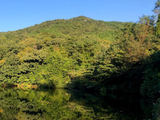 大谷北池 - 2:大谷山