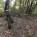 東海自然歩道 春日井コース:玉野園地~道樹山手前 - 29(桧峠から1.8km地点、パノラマ)