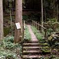 Photos: 東海自然歩道 春日井コース:玉野園地~道樹山手前 - 53(小川に架かる橋)