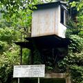 Photos: 春日井東部の山の中にある岩石採集場? - 2
