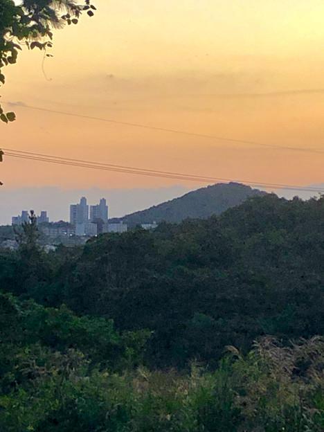 春日井東部の山中から見た高森山と高蔵寺ニュータウンの建物