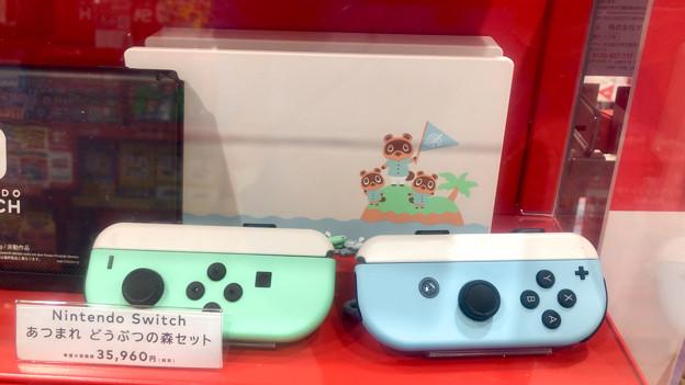 Photos: Nintendo Switch あつまれ どうぶつの森モデルの本体