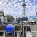 Photos: リニューアル直後で賑わう久屋大通公園 - 3