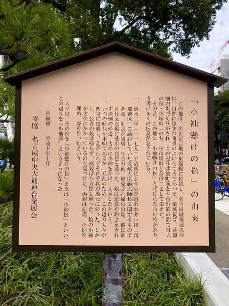 リニューアル直後で賑わう久屋大通公園 - 37:「小袖懸けの松」の由来(説明)