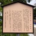 Photos: リニューアル直後で賑わう久屋大通公園 - 37:「小袖懸けの松」の由来(説明)