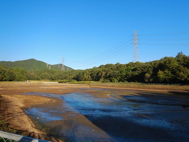 池干し中の宮滝大池 - 1