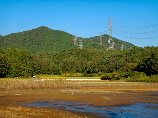 Photos: 池干し中の宮滝大池 - 3