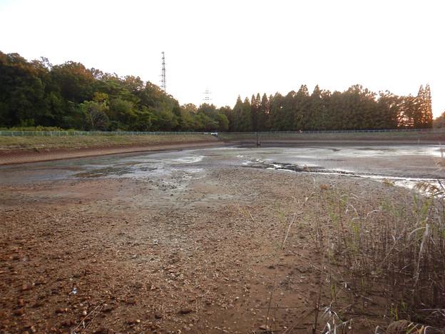 池干し中の宮滝大池 - 4