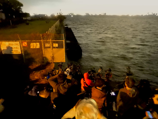 潮見ふ頭から名港水上芸術花火を撮影しようと集まってた人たち - 4