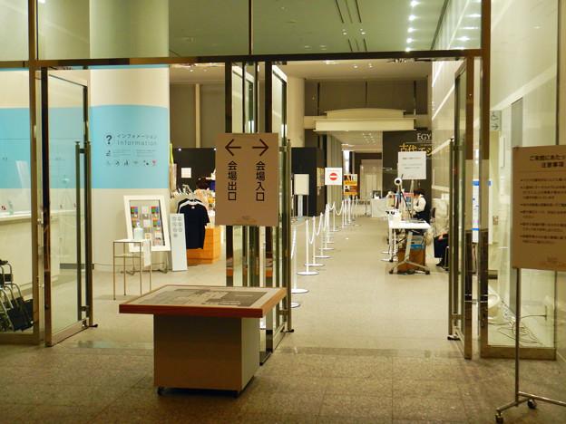 ライデン国立古代博物館所蔵 古代エジプト展 - 2:Covid-19対策がされた会場入り口