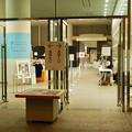Photos: ライデン国立古代博物館所蔵 古代エジプト展 - 2:Covid-19対策がされた会場入り口