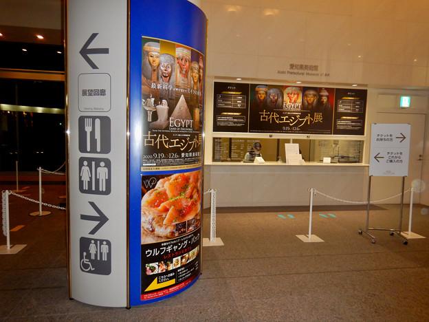 ライデン国立古代博物館所蔵 古代エジプト展 - 1