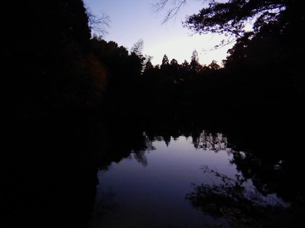 Photos: トワイライトタイムの柿の木池 - 3