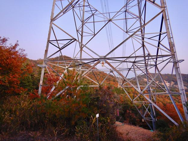 大谷山の送電線鉄塔下 - 1