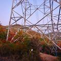 Photos: 大谷山の送電線鉄塔下 - 1