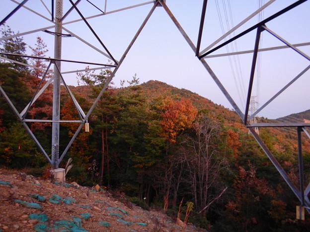 大谷山の送電線鉄塔下 - 2:紅葉した道樹山山頂