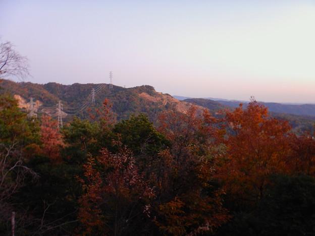 大谷山の送電線鉄塔下 - 5:紅葉した木々越しに見た採石場の斜面