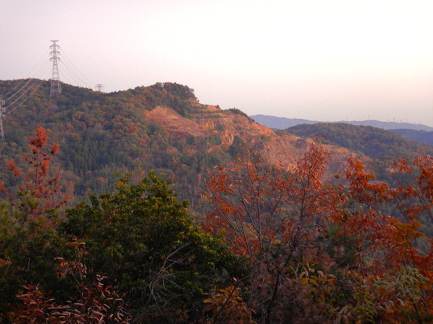 大谷山の送電線鉄塔下 - 6:紅葉した木々越しに見た採石場の斜面