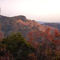 Photos: 大谷山の送電線鉄塔下 - 6:紅葉した木々越しに見た採石場の斜面