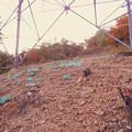 大谷山の送電線鉄塔下 - 7