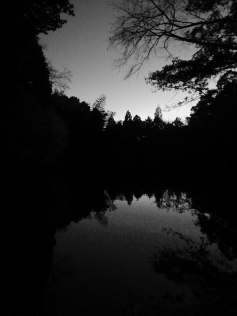 Photos: トワイライトタイムの柿の木池 - 4:モノクロ