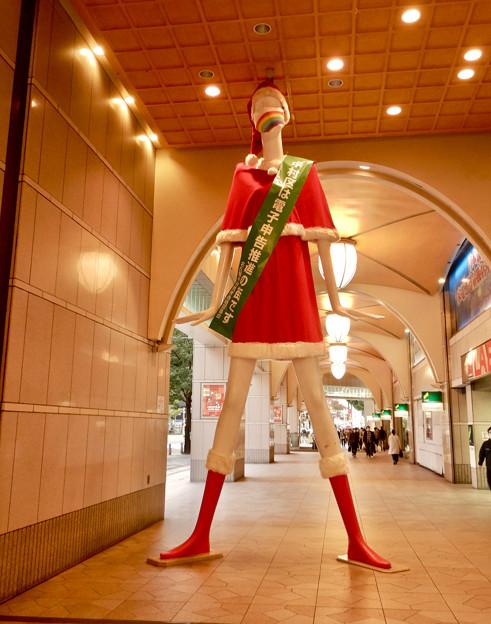 サンタ仕様のナナちゃん人形(2020年) - 1