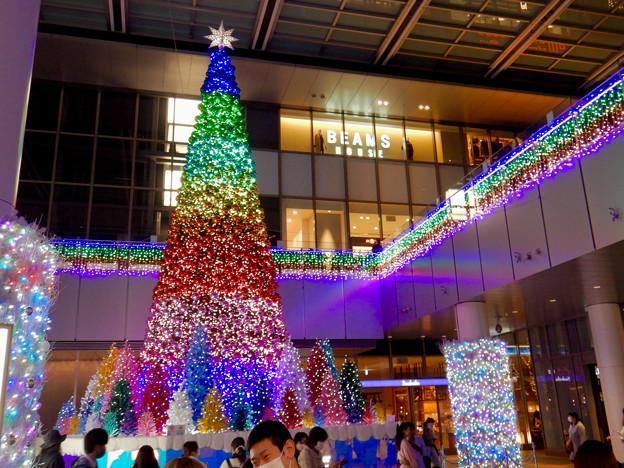 ゲートタワー前のクリスマスツリー 2020 No - 8