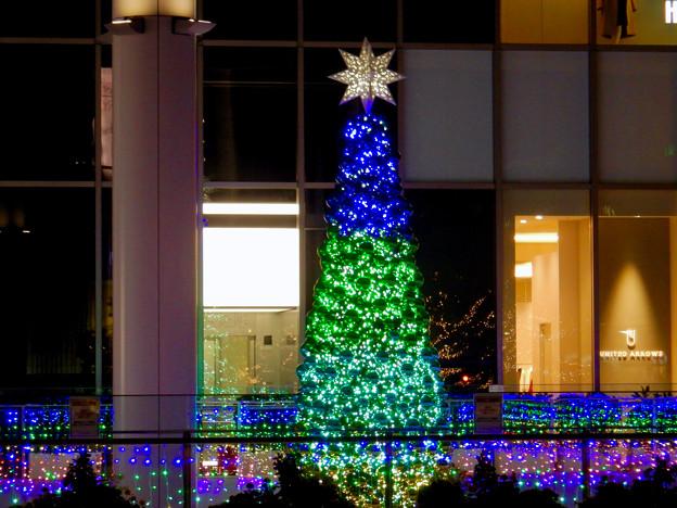 ゲートタワー前のクリスマスツリー 2020 No - 11