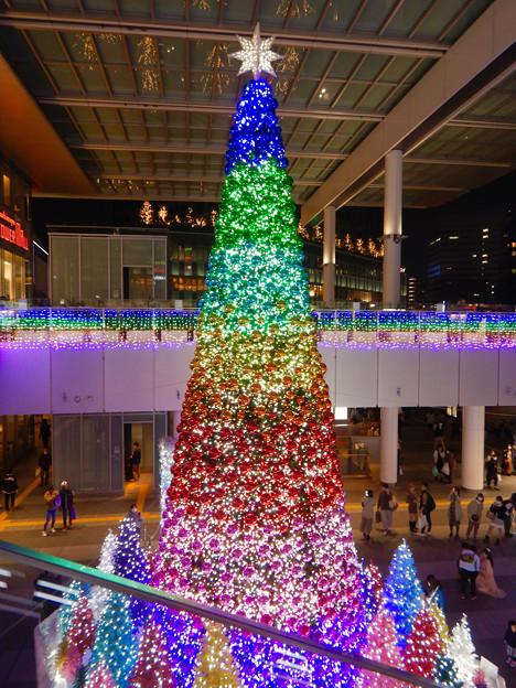 ゲートタワー前のクリスマスツリー 2020 No - 7