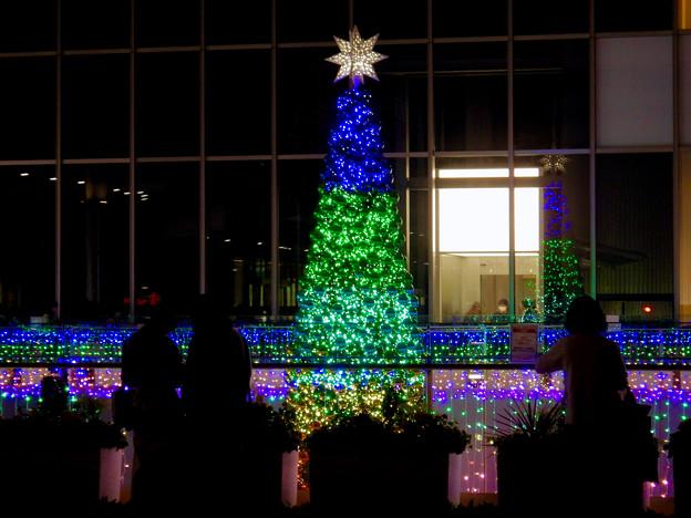 ゲートタワー前のクリスマスツリー 2020 No - 12