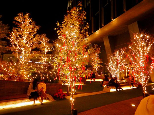 大名古屋ビルヂング スカイガーデンのクリスマスイルミネーション 2020 No - 6