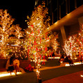 Photos: 大名古屋ビルヂング スカイガーデンのクリスマスイルミネーション 2020 No - 6
