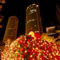 Photos: 大名古屋ビルヂング スカイガーデンのクリスマスイルミネーション 2020 No - 9