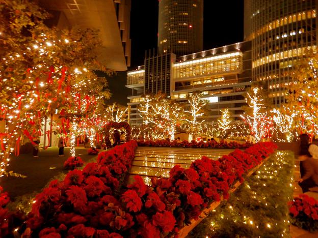 大名古屋ビルヂング スカイガーデンのクリスマスイルミネーション 2020 No - 10