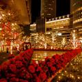 Photos: 大名古屋ビルヂング スカイガーデンのクリスマスイルミネーション 2020 No - 10