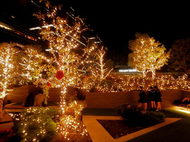 大名古屋ビルヂング スカイガーデンのクリスマスイルミネーション 2020 No - 12