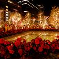 Photos: 大名古屋ビルヂング スカイガーデンのクリスマスイルミネーション 2020 No - 14