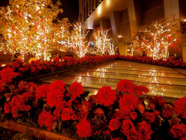 大名古屋ビルヂング スカイガーデンのクリスマスイルミネーション 2020 No - 15