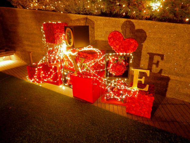 大名古屋ビルヂング スカイガーデンのクリスマスイルミネーション 2020 No - 18